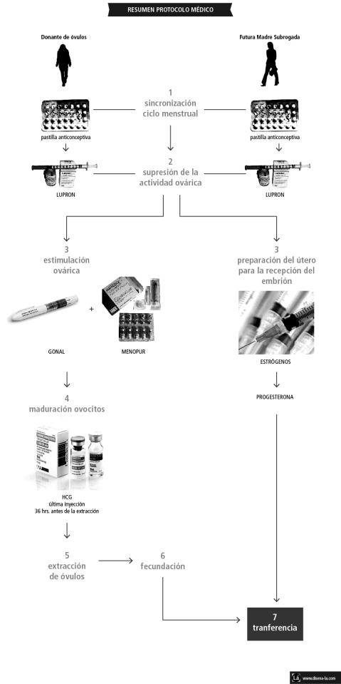 resumen proceso médico